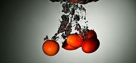 תכירו: החידושים של א.ב זרעים