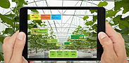 חדשנות בציוד חקלאי